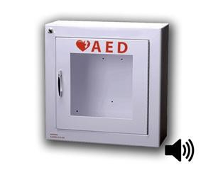 Standard AED Wall Cabinet with Alarm